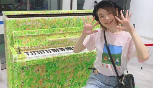 ハラミちゃんは国立音楽大学でピアノを専攻していた事が判明!そして2度挫折したが乗り越えて夢を実現している!